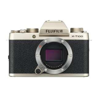 FUJIFILM X-T100【ボディ(レンズ別売)】(シャンパンゴールド/ミラーレス一眼カメラ)