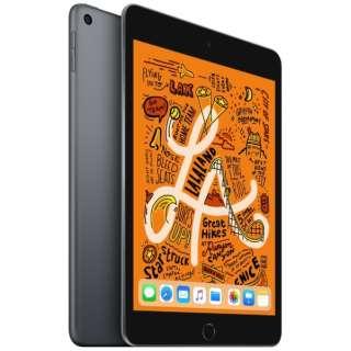 iPad mini 7.9インチ Retinaディスプレイ Wi-Fiモデル MUQW2J/A(64GB・スペースグレイ)(2019) [64GB]